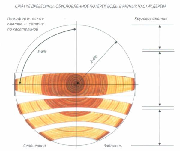 Мера усадки и деформации симметричной доски зависит от распиловки