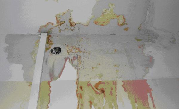 Фотографии ущерба обязательно нужно приложить к исковому заявлению