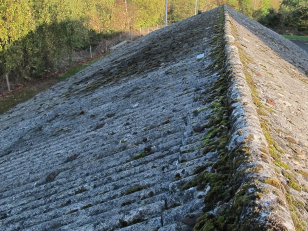 Крыша, поросшая мхом, придает всему строению непривлекательный, неряшливый вид