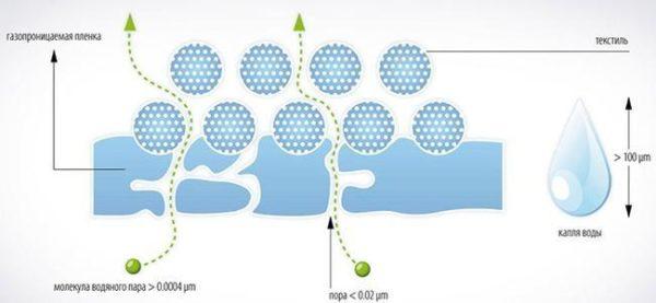 Мембрана пропускает молекулы пара, но препятствует прохождению капель воды